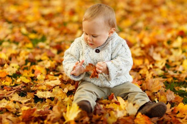 boy-sitting-in-park-in-autumn